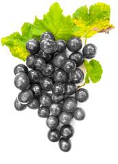 Wall Mural -  raisins noirs