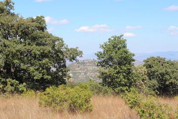 nice mount and land of ixpantepec nieves oaxaca