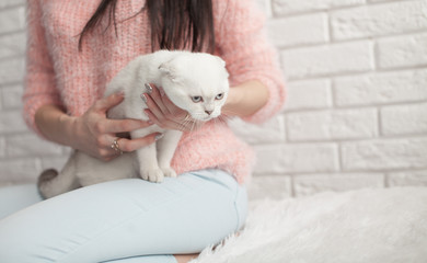 Pets Care.Young woman holding cat home.Cute cat in woman hands.Animal Love.Cat lover.Friendship.