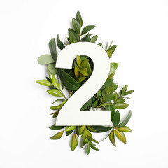 Number two shape with green leaves. Nature concept. Flat lay. Top view