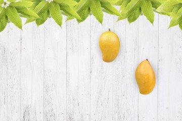 Mango fruit on white wood background with fresh leaf for mango season concept