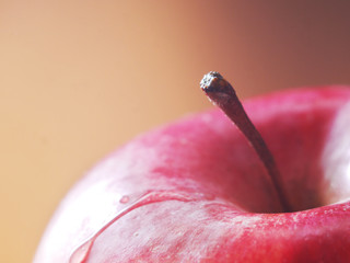 Red apple close-up. Macro photo.