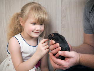Male hands show the little girl a rat
