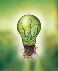 Renewable energy concept - Eco light bulb with leaf and branches inside and roots