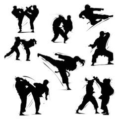 karate set 1