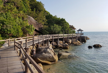 Image of wooden bridge near trees by sea coast