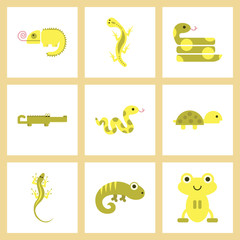 assembly flat icons exotic wild reptiles