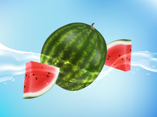 tasty ripe watermelon in clean water. Realistic style. Vector illustration.