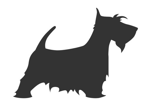 Scotch terrier silhouette breed dog simple black white