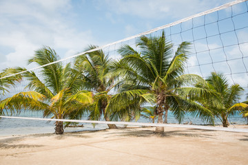 beach volleyball field with palm trees and ocean background