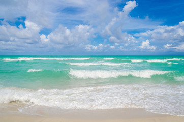 Wall Mural - Miami tropical beach and ocean