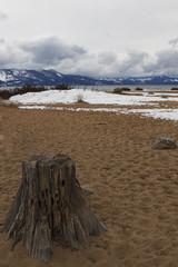 Nevada Beach Campgrounds