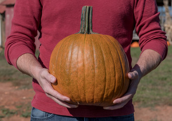 Man Holds Smooth Carving Pumpkin