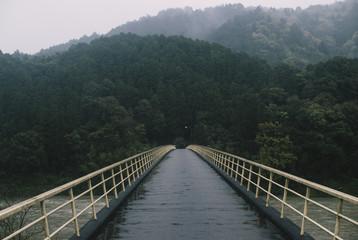 山へ続く橋