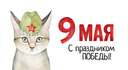 """Victory Day (May 9) poster with kitten portrait in side military cap and congratulating phrase in Russian language: """"May 9. Happy Victory Day""""). Hand drawn water colour on white backdrop, cutout."""