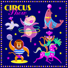 Vector set of circus animals. Cute circus artists in cartoon style: lion, leopard, seal, hippo, dove. Part 1.