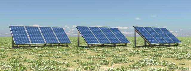 Solarmodule auf einer Wiese