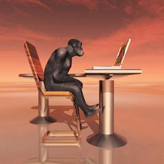 Homo habilis und Laptop - Die Evolution des Menschen