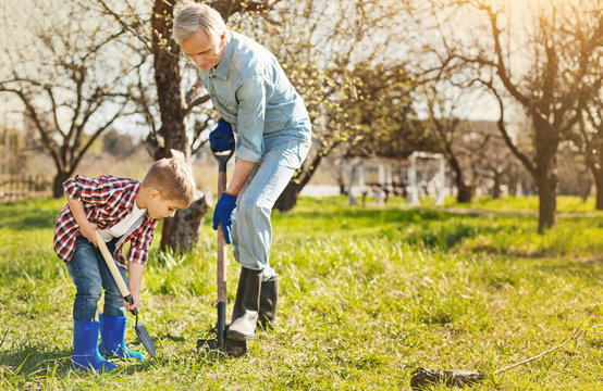 Love for surrounding. Nice little boy holding a spade and digging the ground with his senior grandfather