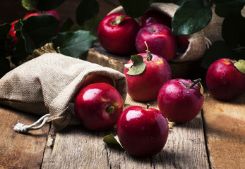 Red apples with drops on vintage wooden background, rustic style, selective focus