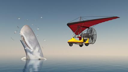 Weltenbummler im Ultraleichtflugzeug und auftauchender Pottwal umgeben von Seemöwen