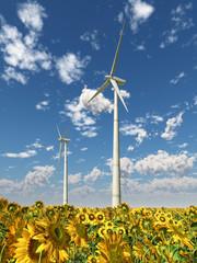 Windkraftanlagen und Sonnenblumen