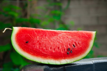 Sweet watermelon cure delicious thirst as a popular plant.