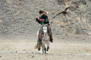 Unknown Mongolian Hunter ( So Called Berkutchi ) Astride On Horse And Flying Golden Eagle. Falconry In West Mongolia. Golden Eagle Attacks Prey. Mongolian Horseman With Golden Eagle