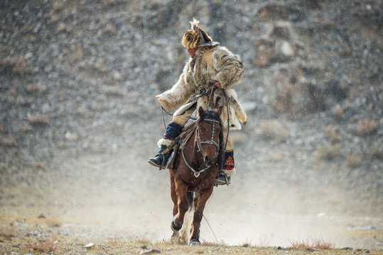 Western Mongolia.Traditional Golden Eagle Festival. Unknown Mongolian Hunter In Traditional Clothes Of Wolf Fur  Astride On Brown Horse. Falconry In West Mongolia.