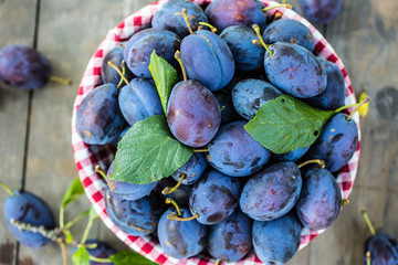 Plums. Blue and violet plums in the garden on wooden table