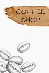 Hand drawn coffee beans and watercolor spot isolated on white
