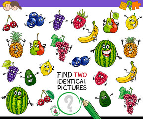 find two identical fruits game for kids