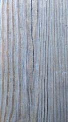Wood Texture Colored
