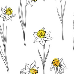 vector seamless pattern with narcissus