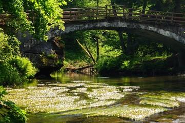 Old bridge across the river