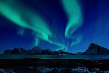 Northern Lights, Aurora Borealis shining green in night starry sky at winter Lofoten Islands, Norway