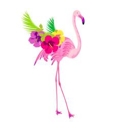 Beautiful pink flamingo, isolated on white
