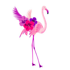 Beautiful pink flamingo, isolated on white
