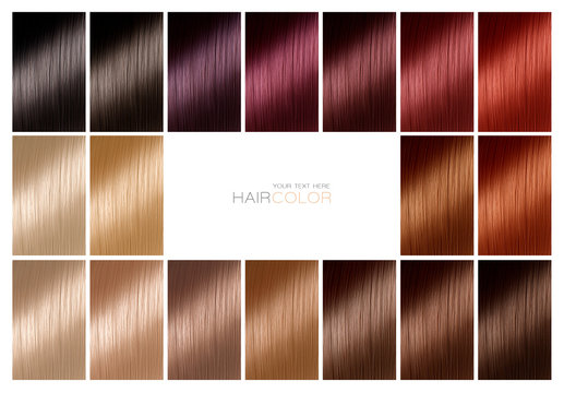 Color chart for hair dye. Tints. Hair color palette with a range of swatches.