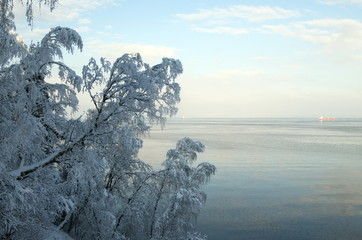 Seashore. The Gulf of Finland. Winter.