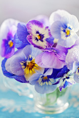 Photo of a beautiful purple pansy flowers close-up in a mug on a light background. Beautiful and delicate flowers.