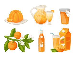 Oranges and orange products vector illustration natural citrus fruit vector juicy tropical dessert beauty organic juice healthy food.