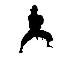 Strong karate practitioner standing in a stance