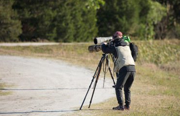 unknown photographers taking pictures in the wilderness