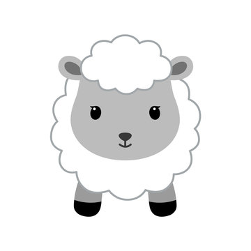 Adorable sheep in modern flat style.