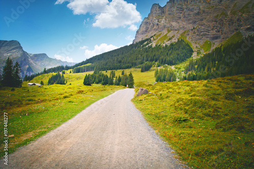 Road Surrounded By A Beautiful Mountain Forest Landscape