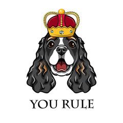 English cocker spaniel wearing in crown. King dog.  illustration.