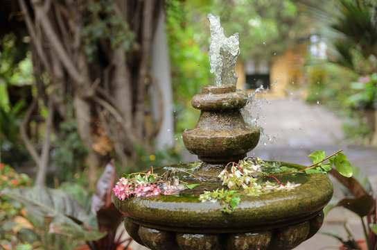 Water pumped into the air from  vintage stone fountain in the  green garden. Garden design and decor background.