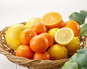 柑橘類イメージカット