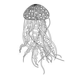 the figure of Medusa in the style of doodling black outlines with small patterns on a white background